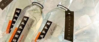 Grapas Premium: 7 destilados de alta gama para descubrir