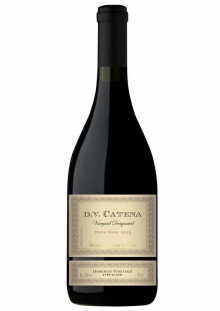 DV Catena Domingo Vineyard Pinot Noir